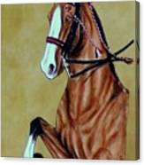 Saddlebred Canvas Print