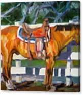 Saddled Canvas Print