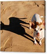 Sadie And Her Shadow Canvas Print