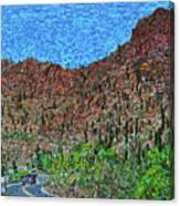 Sagauro National Park Canvas Print