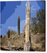 Saguaro Skeleton Canvas Print
