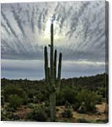 Saguaro Sun Break Clouds Canvas Print