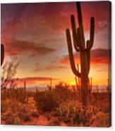 Saguaro Sunset Canvas Print