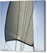 Sail In The Wind. Canvas Print