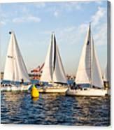 Sail Race Canvas Print