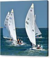 Sailboat Championship Racing 5 Canvas Print