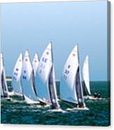 Sailboat Championship Regatta Canvas Print