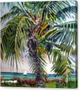 Sailboat in the Keys Canvas Print