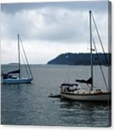 Sailboats In Bar Harbor Canvas Print