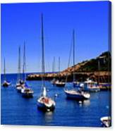 Sailboats Moored In Rockport Harbour. Canvas Print