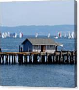 Sailing At Penn Cove Canvas Print