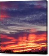 Sailor's Delight Canvas Print