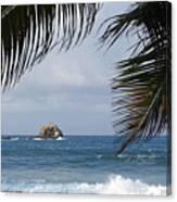 Saint Lucia Palm Tree Small Rock Caribbean Flowing Canvas Print