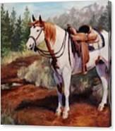Saint Quincy Paint Horse Portrait Painting Canvas Print