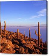 Salar De Uyuni And Cacti At Sunrise Canvas Print