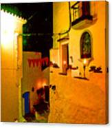 Salares By Night With Cat Canvas Print