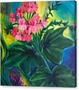 Salmon Pink Geraniums Canvas Print