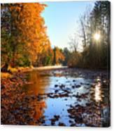 Salmon River Sanctuary Canvas Print