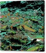 Salmon Run 10 Canvas Print