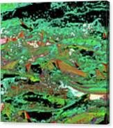Salmon Run 9 Canvas Print