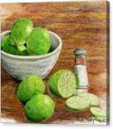 Salt And Lime Canvas Print