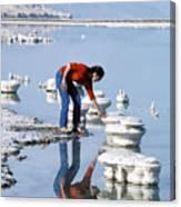Salt Pillars In Dead Sea Canvas Print