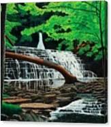 Salt Springs Canvas Print