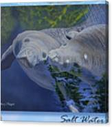 Salt Water Ballet - Manatees - 2 Canvas Print