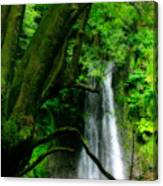 Salto Do Prego Waterfall Canvas Print