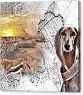 Saluki - The One And Only Canvas Print