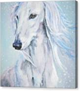 Saluki White Beauty Canvas Print