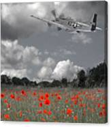 Salute To The Brave - P51 Flying Over Poppy Field Canvas Print
