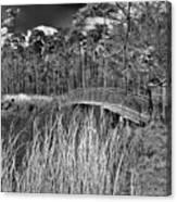 Sam Houston Jones State Park Bridge Bw Canvas Print