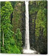 Samoan Falls 2 Canvas Print