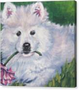 Samoyed Pup With Peony Canvas Print