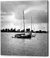 San Diego Bay Sailboats Canvas Print