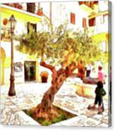 San Felice Circeo Olive Tree In The Square Canvas Print