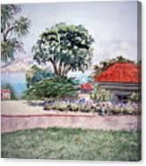 San Francisco Park Presidio Canvas Print