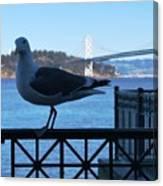 San Francisco - Oakland Bay Bridge - Seagull View Canvas Print