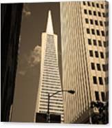 San Francisco - Transamerica Pyramid Sepia Canvas Print