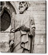 San Lucas Statue At The Manizales Cathedral Canvas Print