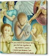 Sanctity Of Life Canvas Print