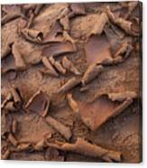 Sand And Mud Curls Canvas Print