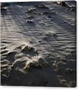Sand Beach At Sunset Canvas Print