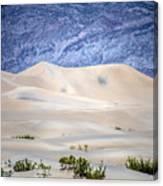 Sand Desert Usa Canvas Print