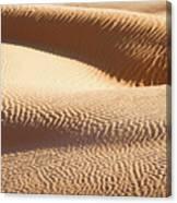 Sand Dunes 2 Canvas Print