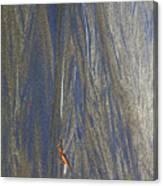 Sand Patterns At Moeraki Canvas Print