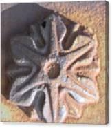 Sand Star Canvas Print