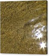 Sand Stars Canvas Print