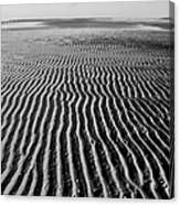 Sandbar Patterns Canvas Print